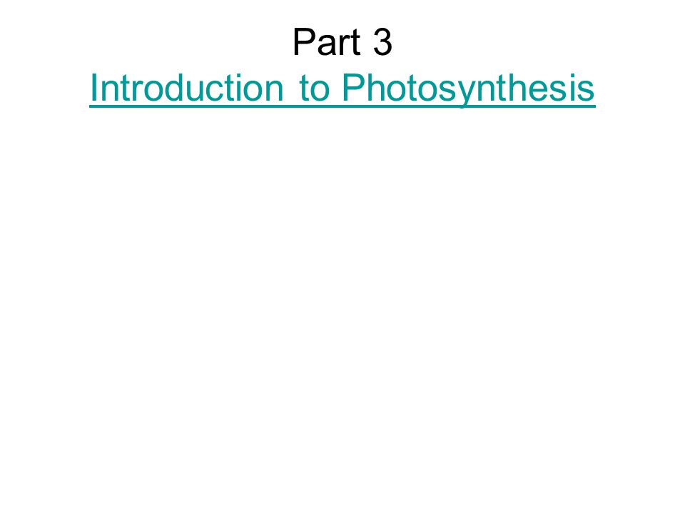 Part 3 Introduction to Photosynthesis Introduction to Photosynthesis
