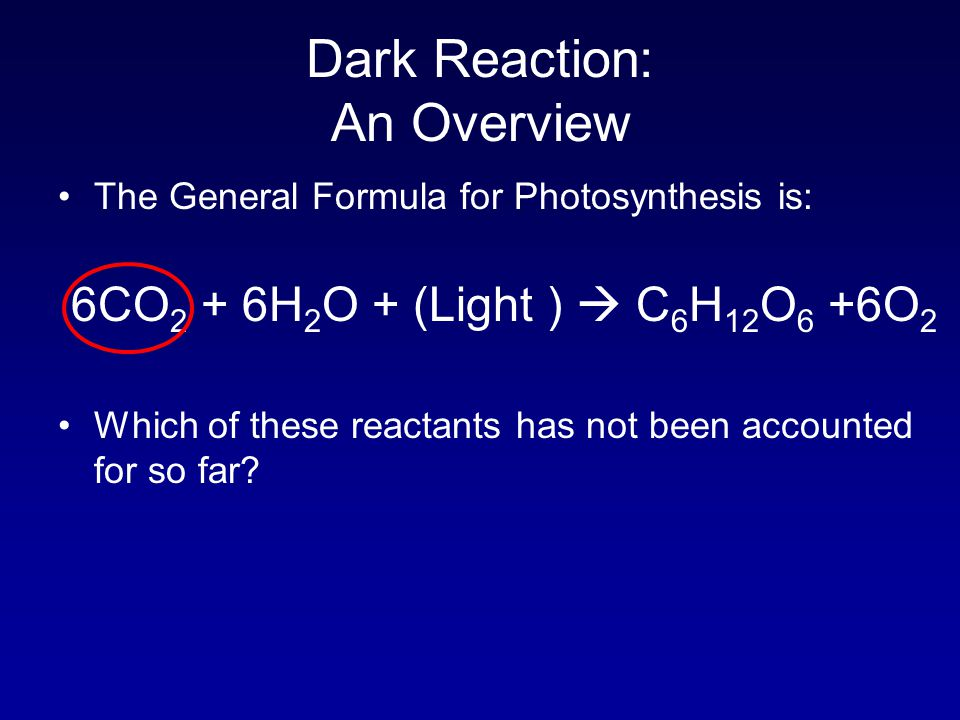 Dark Reaction: An Overview The General Formula for Photosynthesis is: 6CO 2 + 6H 2 O + (Light )  C 6 H 12 O 6 +6O 2 Which of these reactants has not been accounted for so far