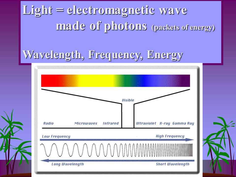 Light = electromagnetic wave made of photons (packets of energy) made of photons (packets of energy) Wavelength, Frequency, Energy
