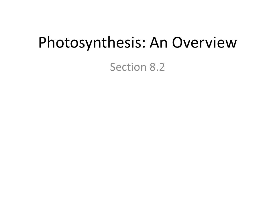 Photosynthesis: An Overview Section 8.2