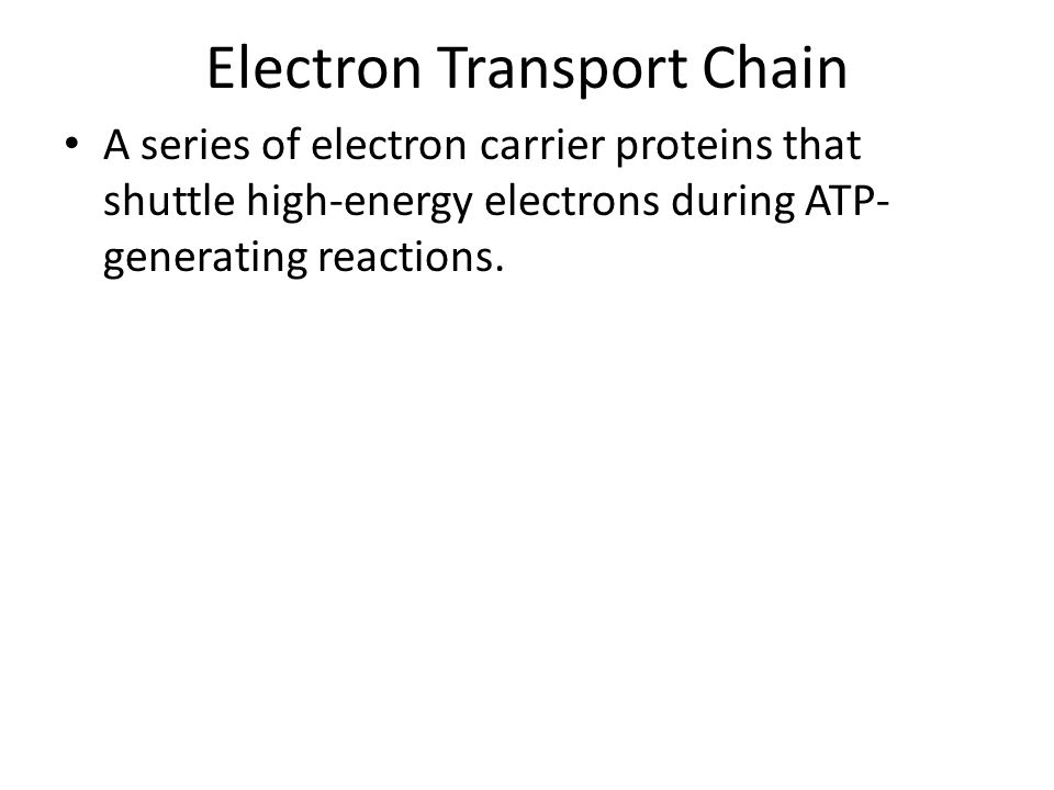 Electron Transport Chain A series of electron carrier proteins that shuttle high-energy electrons during ATP- generating reactions.