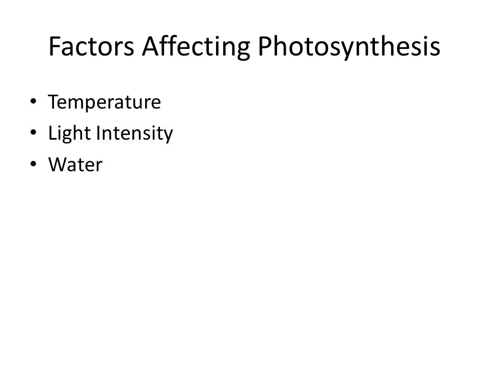 Factors Affecting Photosynthesis Temperature Light Intensity Water