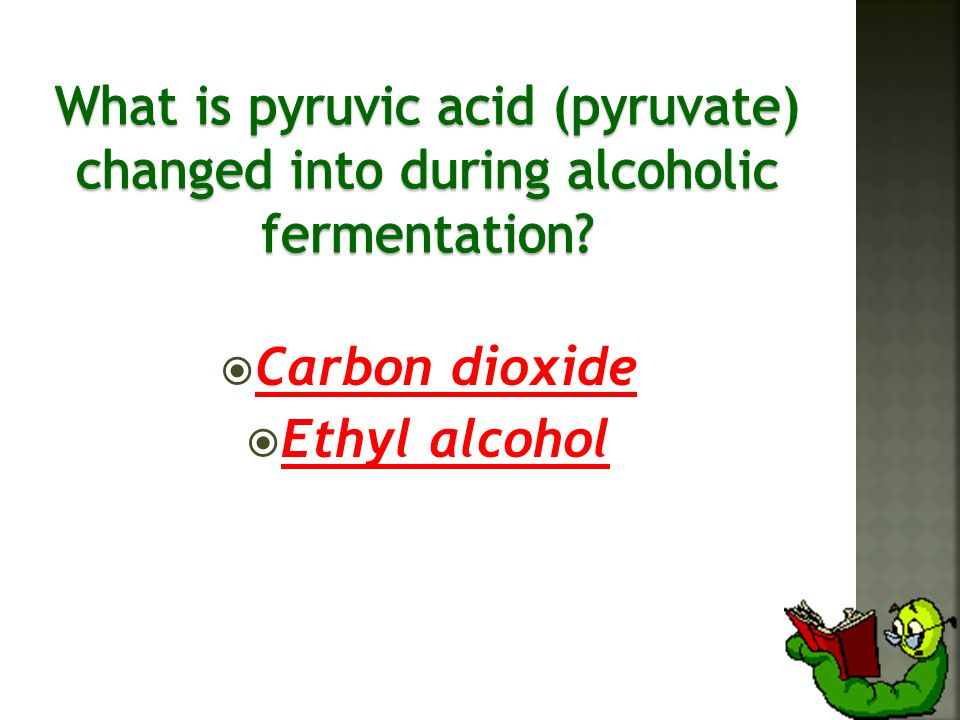  Carbon dioxide  Ethyl alcohol