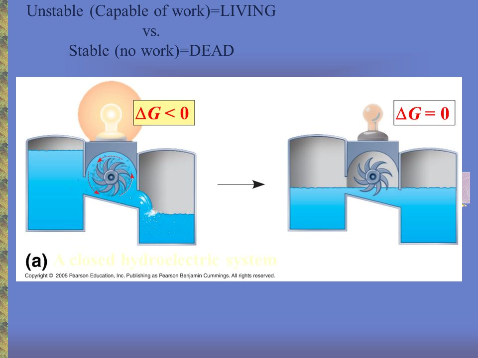 Unstable (Capable of work)=LIVING vs.