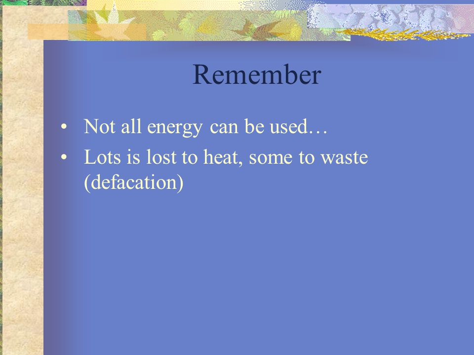 Remember Not all energy can be used… Lots is lost to heat, some to waste (defacation)