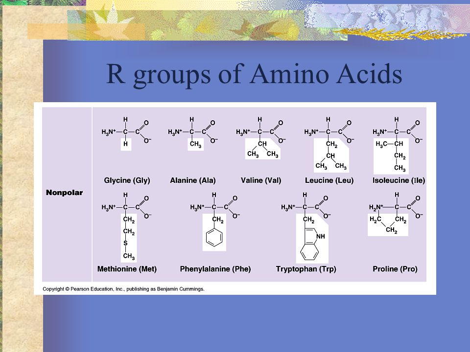 R groups of Amino Acids