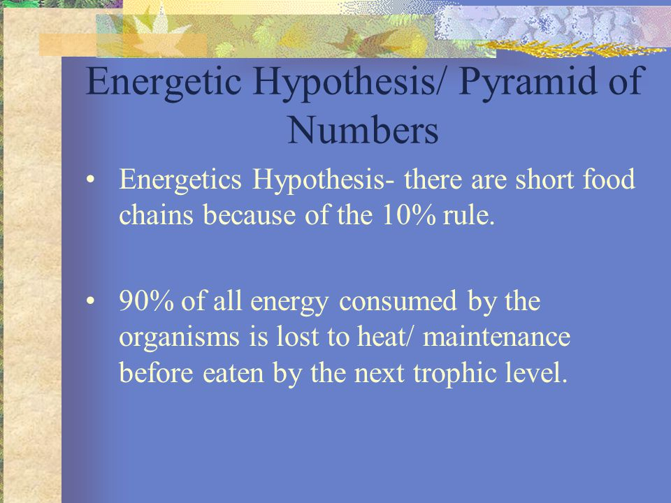 Energetic Hypothesis/ Pyramid of Numbers Energetics Hypothesis- there are short food chains because of the 10% rule.