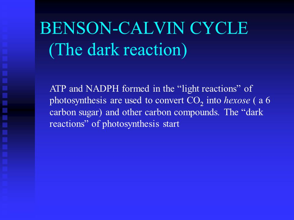 BENSON-CALVIN CYCLE (The dark reaction) ATP and NADPH formed in the light reactions of photosynthesis are used to convert CO 2 into hexose ( a 6 carbon sugar) and other carbon compounds.