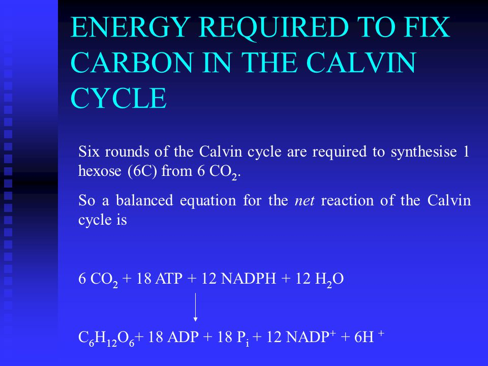 ENERGY REQUIRED TO FIX CARBON IN THE CALVIN CYCLE Six rounds of the Calvin cycle are required to synthesise 1 hexose (6C) from 6 CO 2.