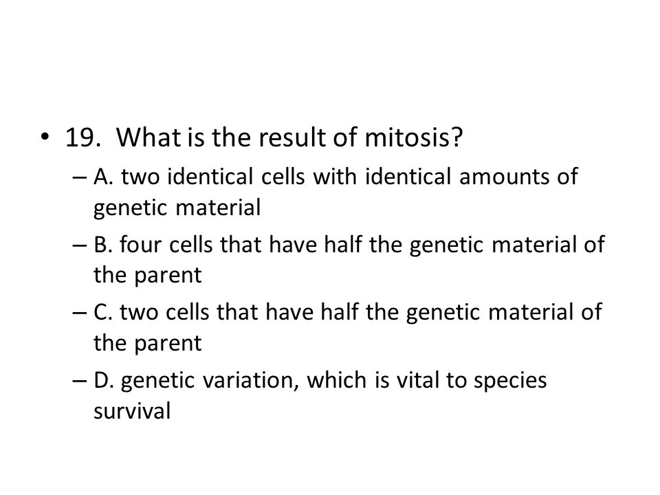 19. What is the result of mitosis? – A. two identical cells with identical amounts of genetic material – B. four cells that have half the genetic mate