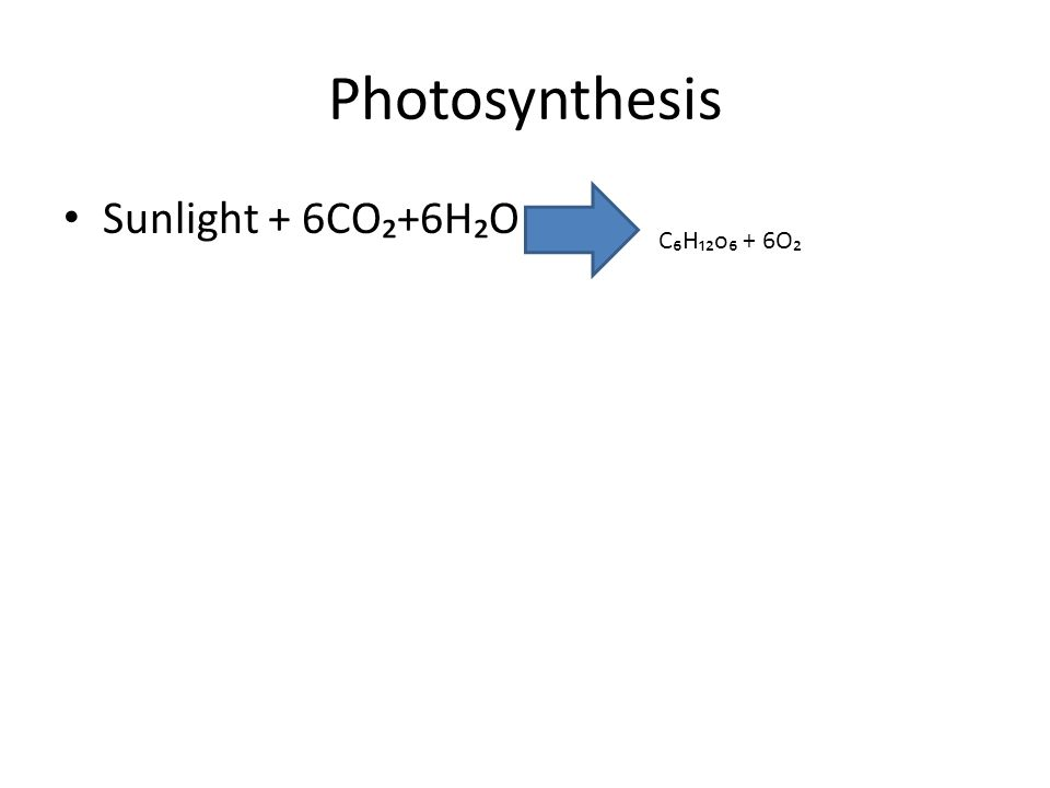 Photosynthesis Sunlight + 6CO₂+6H₂O C₆H₁₂o₆ + 6O₂