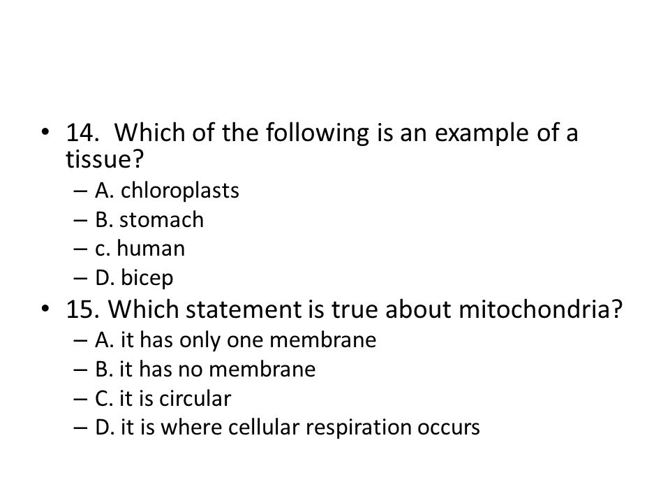 16.Where do eukaryotic cells store hereditary information.