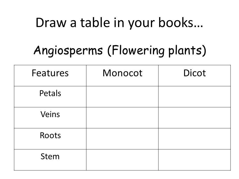 Draw a table in your books… FeaturesMonocotDicot Petals Veins Roots Stem Angiosperms (Flowering plants)