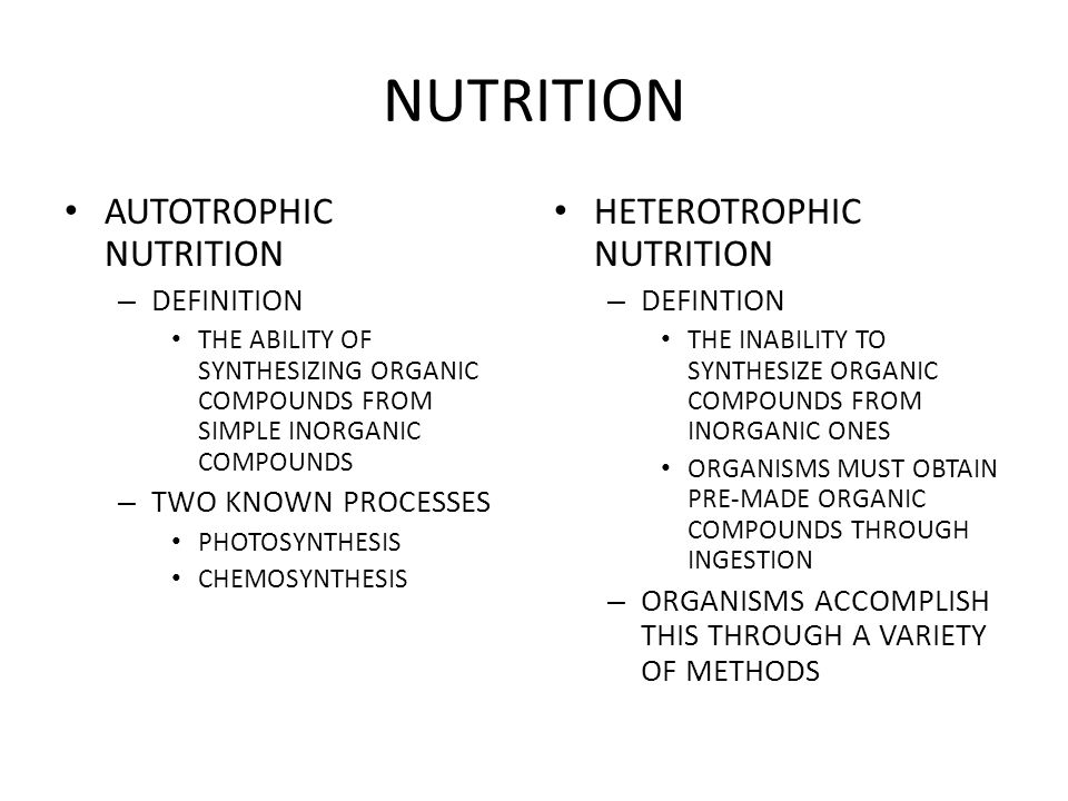 NUTRITION WHAT IS THIS ORGANISM?