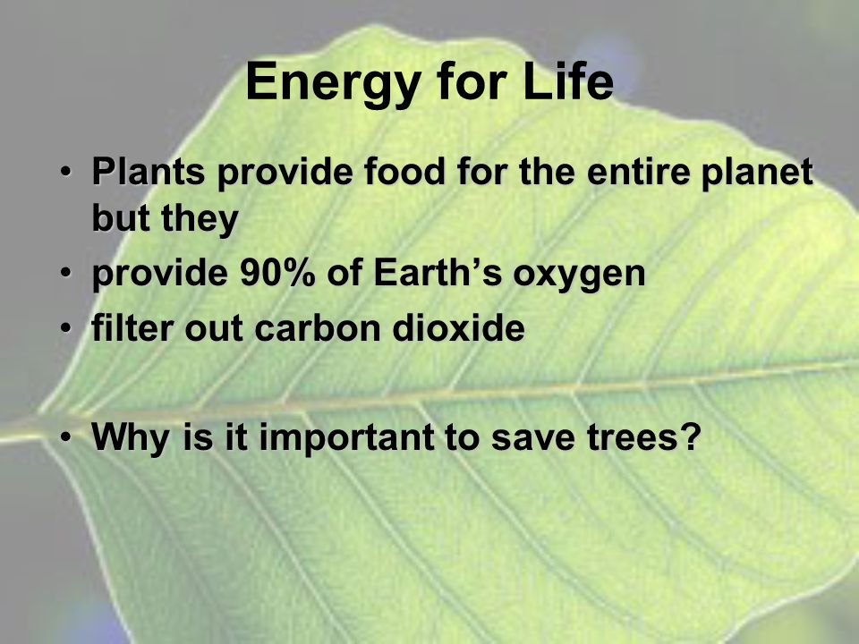 Photosynthesis The process by which plants and some other organisms capture light energy and use it to make glucose from carbon dioxide and waterThe process by which plants and some other organisms capture light energy and use it to make glucose from carbon dioxide and water –Photo = –Synthesis = light putting together
