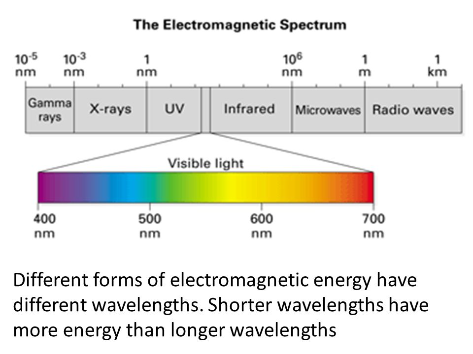 Different forms of electromagnetic energy have different wavelengths. Shorter wavelengths have more energy than longer wavelengths