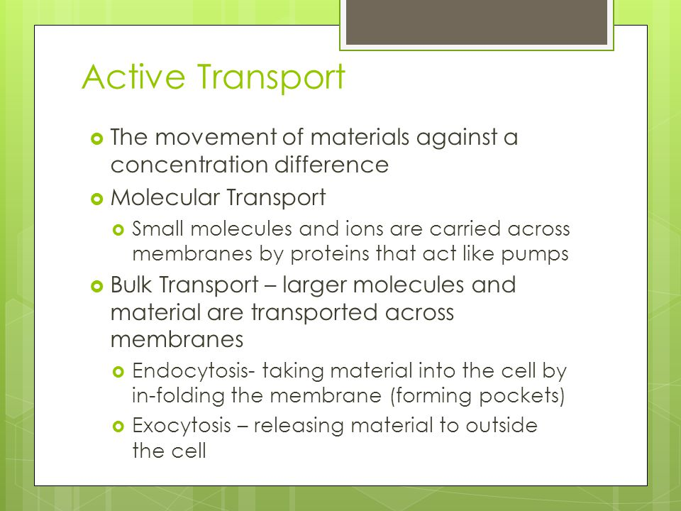 Active Transport  The movement of materials against a concentration difference  Molecular Transport  Small molecules and ions are carried across me