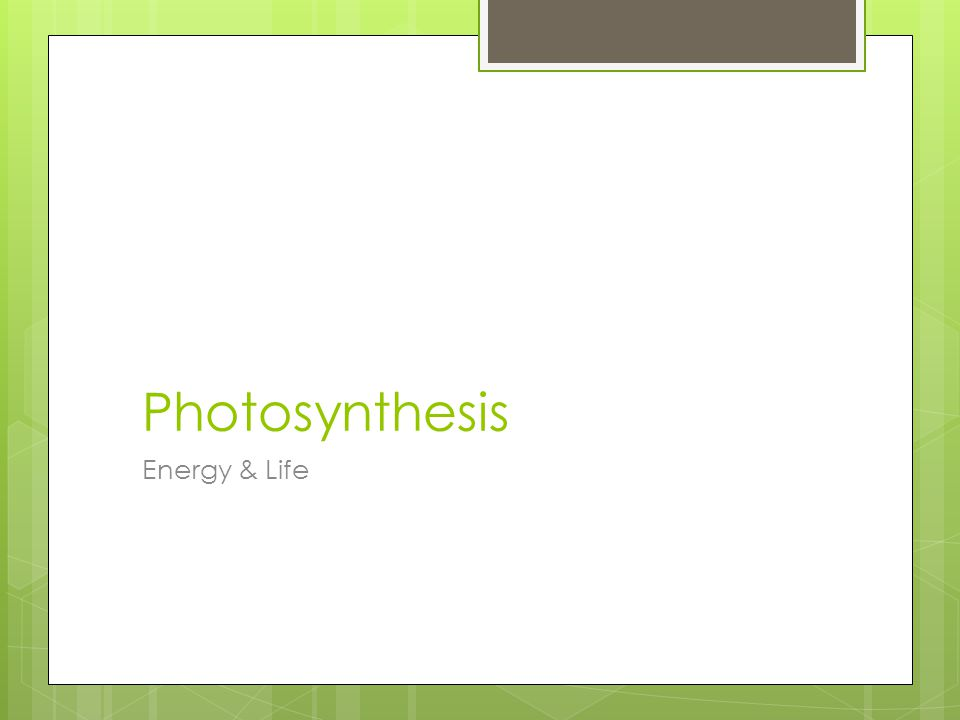 Photosynthesis Energy & Life