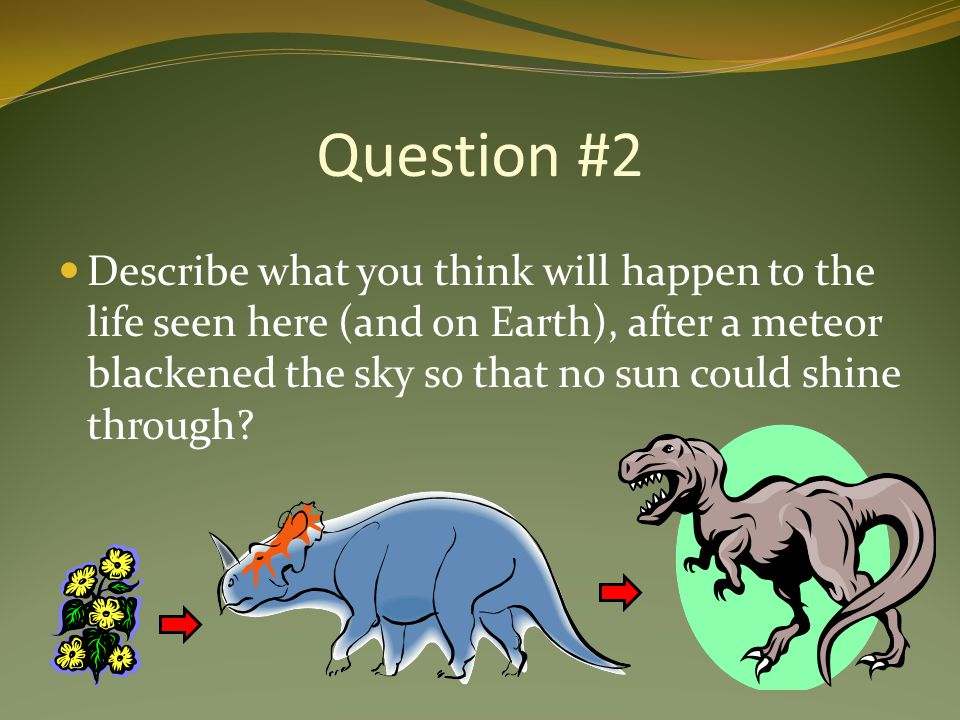 Question #2 Describe what you think will happen to the life seen here (and on Earth), after a meteor blackened the sky so that no sun could shine through?