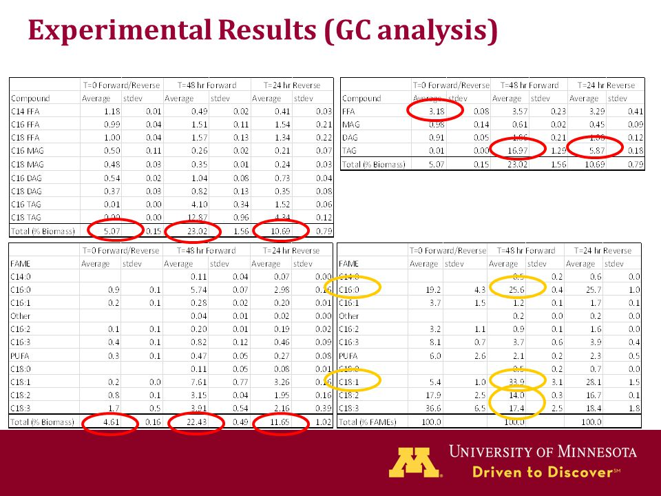 Experimental Results (GC analysis)