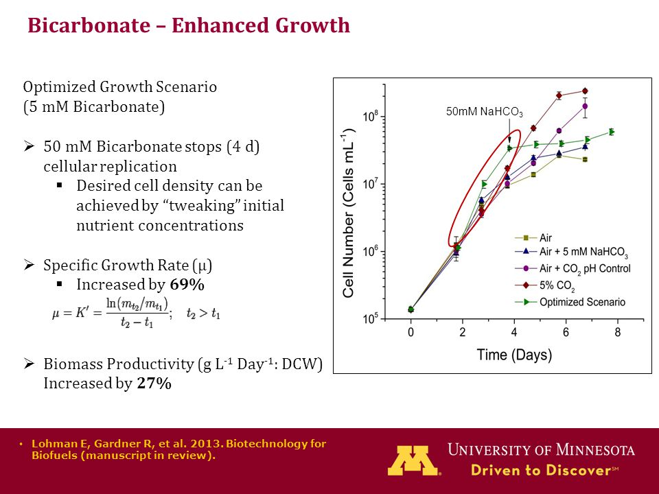 Bicarbonate – Enhanced Growth Optimized Growth Scenario (5 mM Bicarbonate)  50 mM Bicarbonate stops (4 d) cellular replication  Desired cell density can be achieved by tweaking initial nutrient concentrations  Specific Growth Rate (µ)  Increased by 69%  Biomass Productivity (g L -1 Day -1 : DCW) Increased by 27% Lohman E, Gardner R, et al.