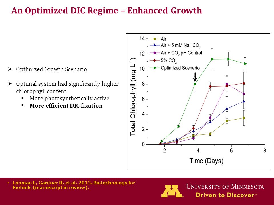 An Optimized DIC Regime – Enhanced Growth  Optimized Growth Scenario  Optimal system had significantly higher chlorophyll content  More photosynthetically active  More efficient DIC fixation Lohman E, Gardner R, et al.