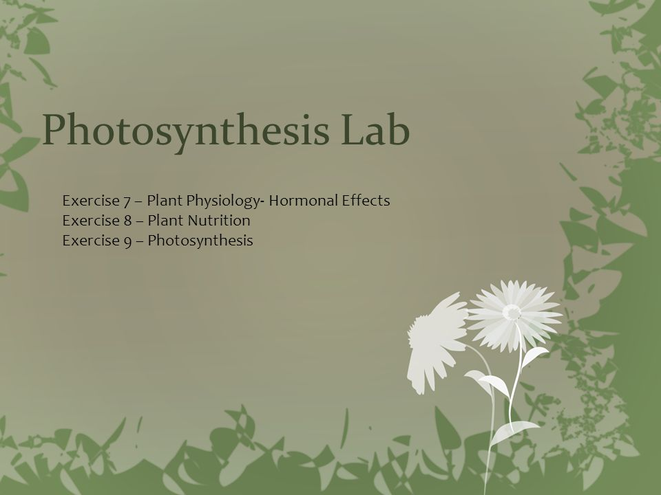 Photosynthesis Lab Exercise 7 – Plant Physiology- Hormonal Effects Exercise 8 – Plant Nutrition Exercise 9 – Photosynthesis