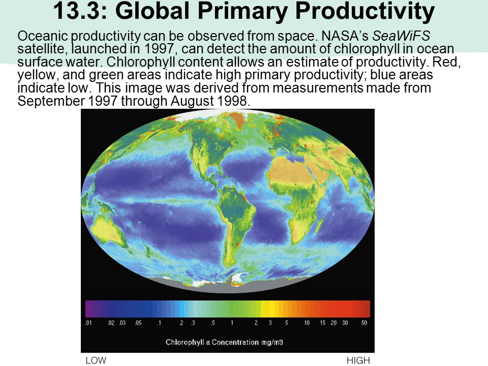 13.3: Global Primary Productivity Oceanic productivity can be observed from space. NASA's SeaWiFS satellite, launched in 1997, can detect the amount o