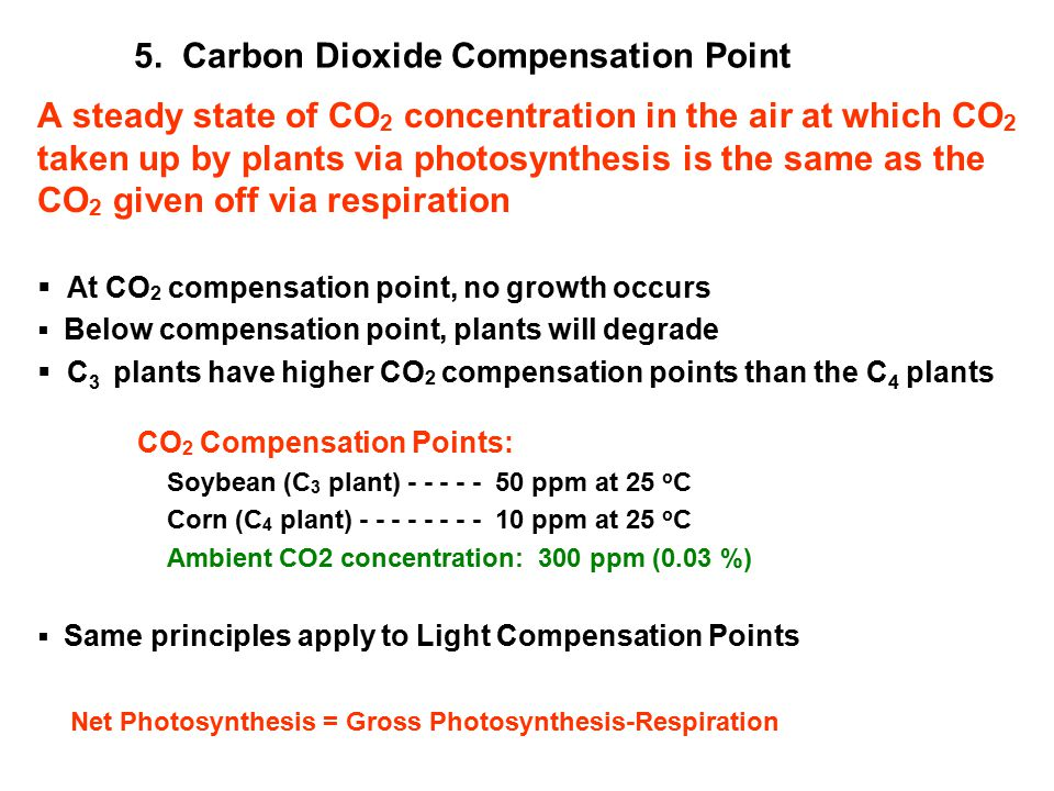 5. Carbon Dioxide Compensation Point A steady state of CO 2 concentration in the air at which CO 2 taken up by plants via photosynthesis is the same a