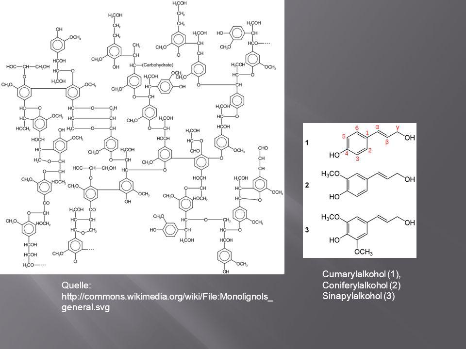 Quelle: http://commons.wikimedia.org/wiki/File:Monolignols_ general.svg Cumarylalkohol (1), Coniferylalkohol (2) Sinapylalkohol (3)