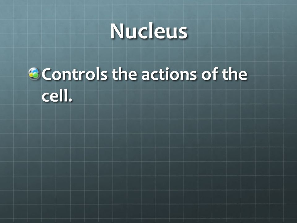 Nucleic Acids Provide the cell with the instructions for the maintenance, growth, and reproduction of the cell.