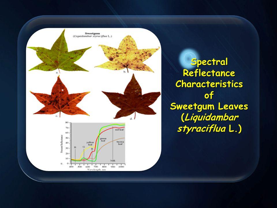 . Spectral Reflectance Characteristics of Sweetgum Leaves (Liquidambar styraciflua L.)