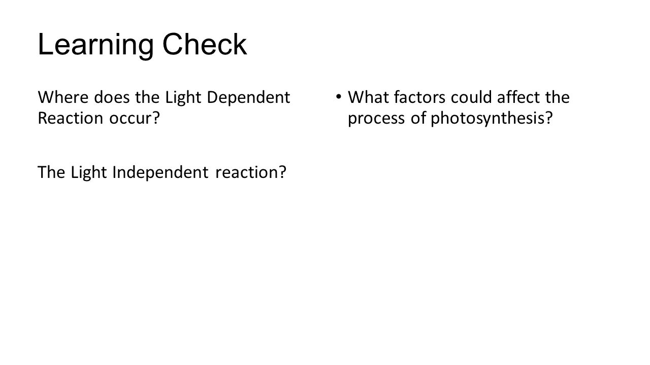 Learning Check Where does the Light Dependent Reaction occur.