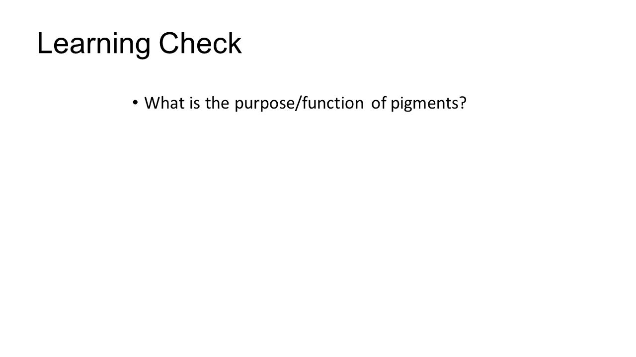 Learning Check What is the purpose/function of pigments