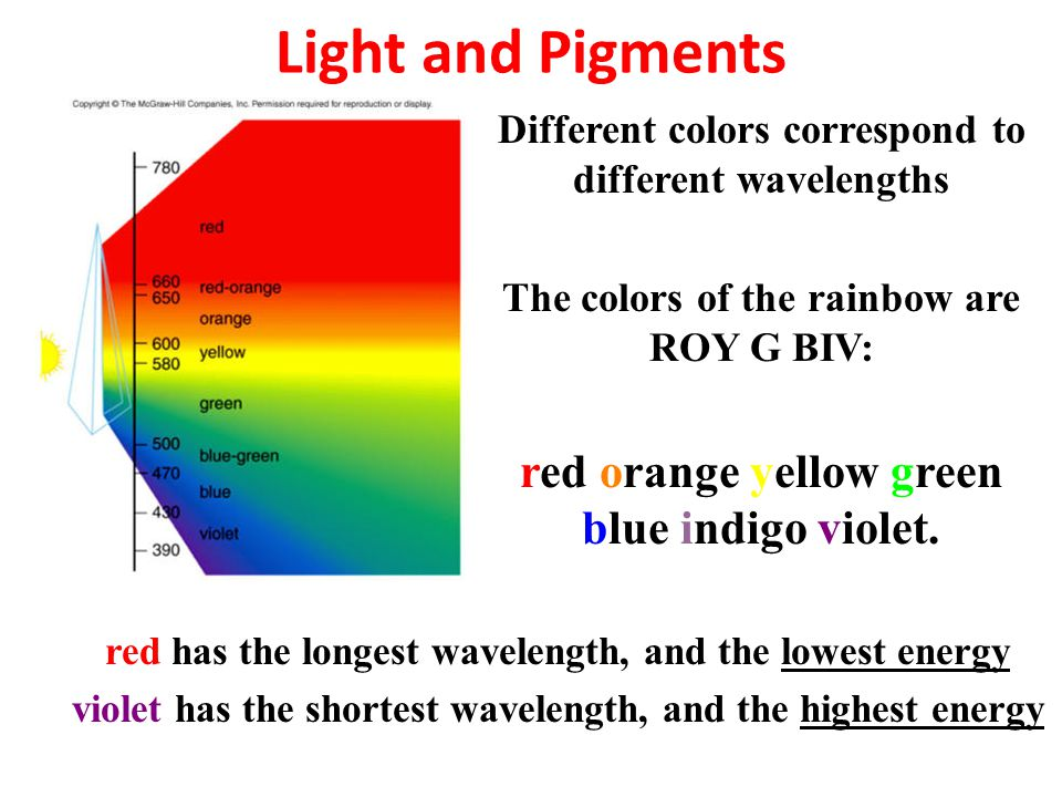 Light and Pigments Different colors correspond to different wavelengths The colors of the rainbow are ROY G BIV: red orange yellow green blue indigo v