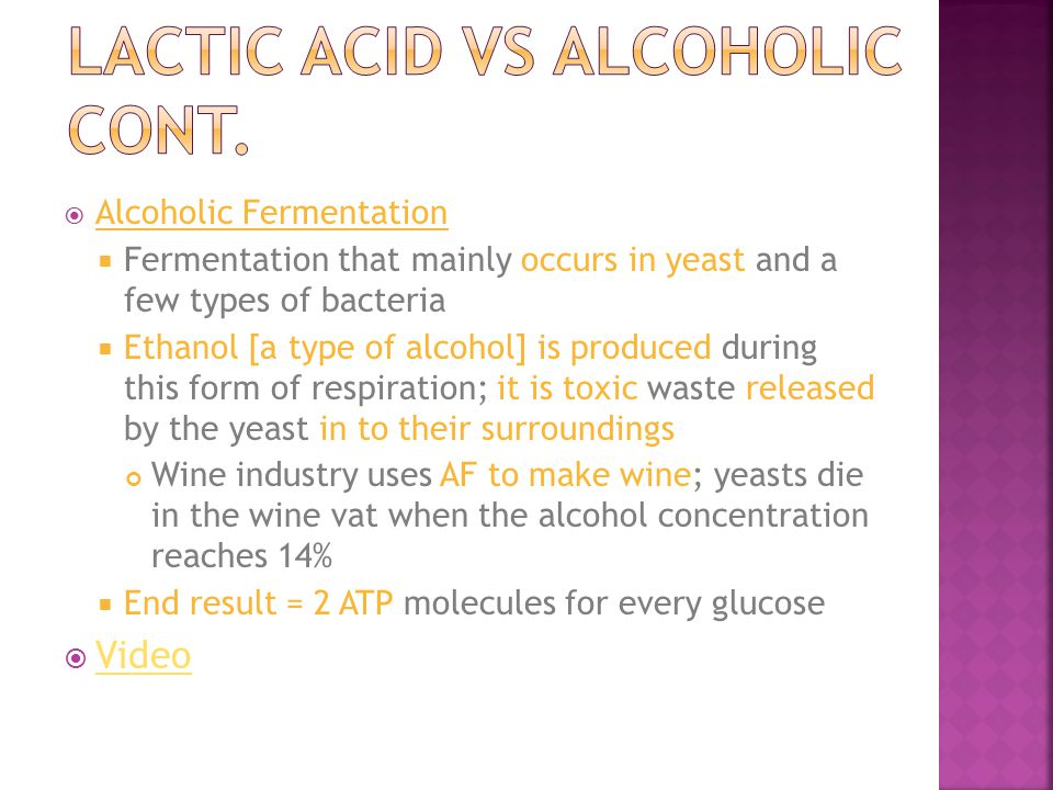  Alcoholic Fermentation  Fermentation that mainly occurs in yeast and a few types of bacteria  Ethanol [a type of alcohol] is produced during this form of respiration; it is toxic waste released by the yeast in to their surroundings Wine industry uses AF to make wine; yeasts die in the wine vat when the alcohol concentration reaches 14%  End result = 2 ATP molecules for every glucose  Video Video