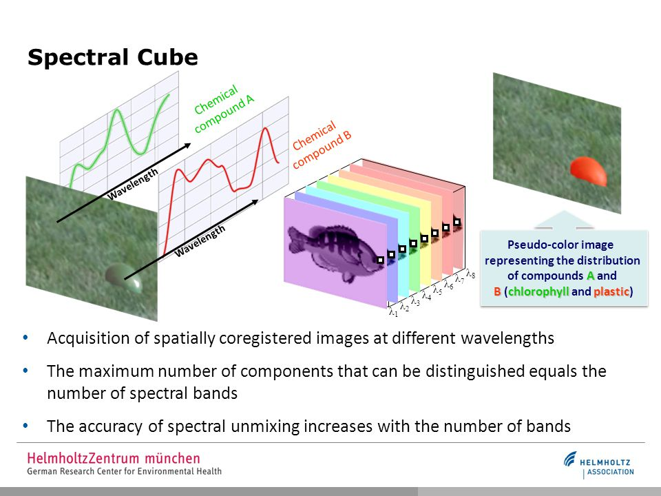 Spectral Cube λ1λ1 λ2λ2 λ3λ3 λ4λ4 λ5λ5 λ6λ6 λ7λ7 λ8λ8 Acquisition of spatially coregistered images at different wavelengths The maximum number of components that can be distinguished equals the number of spectral bands The accuracy of spectral unmixing increases with the number of bands Chemical compound A Chemical compound B A Bchlorophyllplastic Pseudo-color image representing the distribution of compounds A and B (chlorophyll and plastic) Wavelength