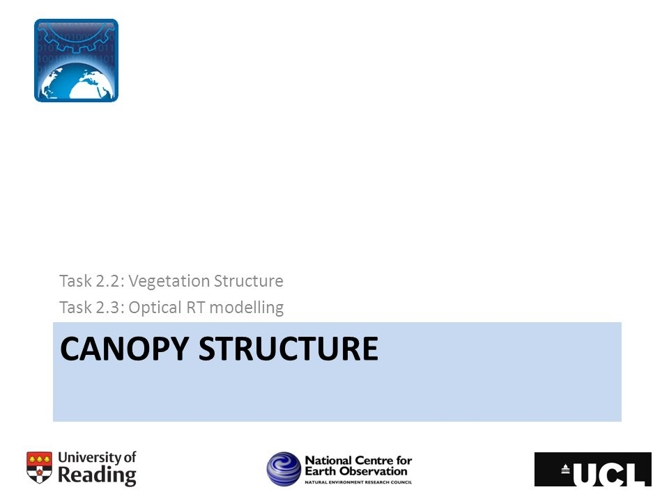 Typical observation operator 1D-RT model of the canopy Very simple canopy structure: Vertical homogeneity in leaf size, arrangement and reflective properties