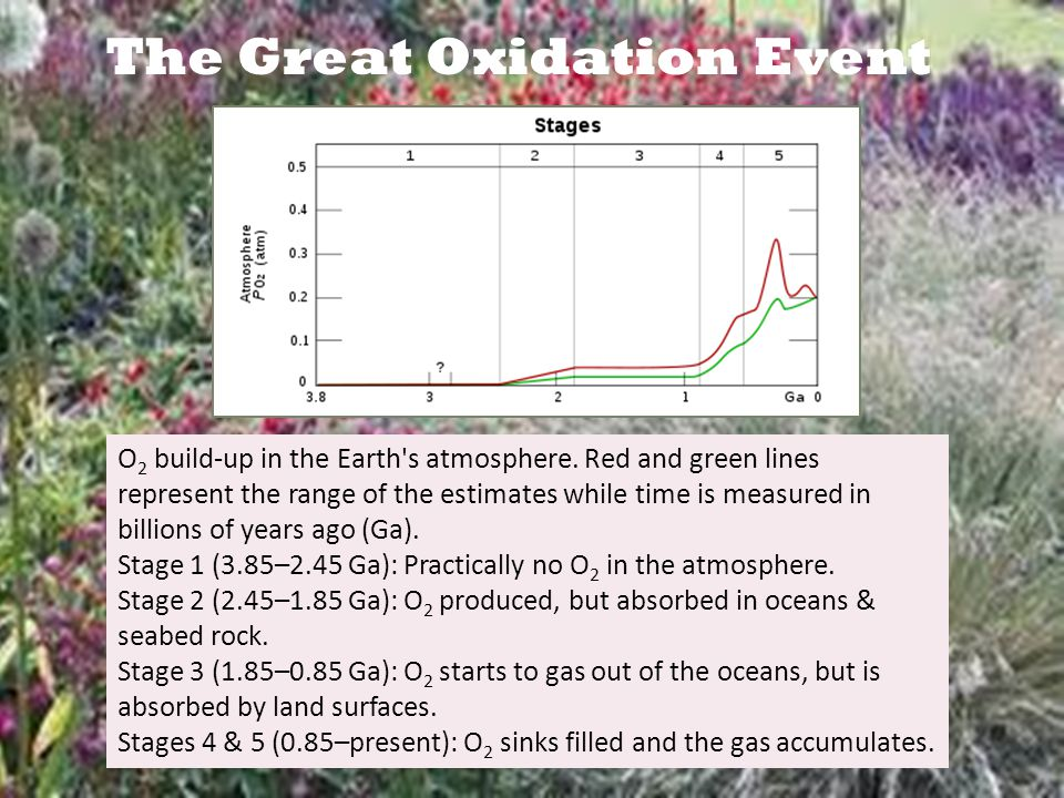 The Great Oxidation Event O 2 build-up in the Earth s atmosphere.