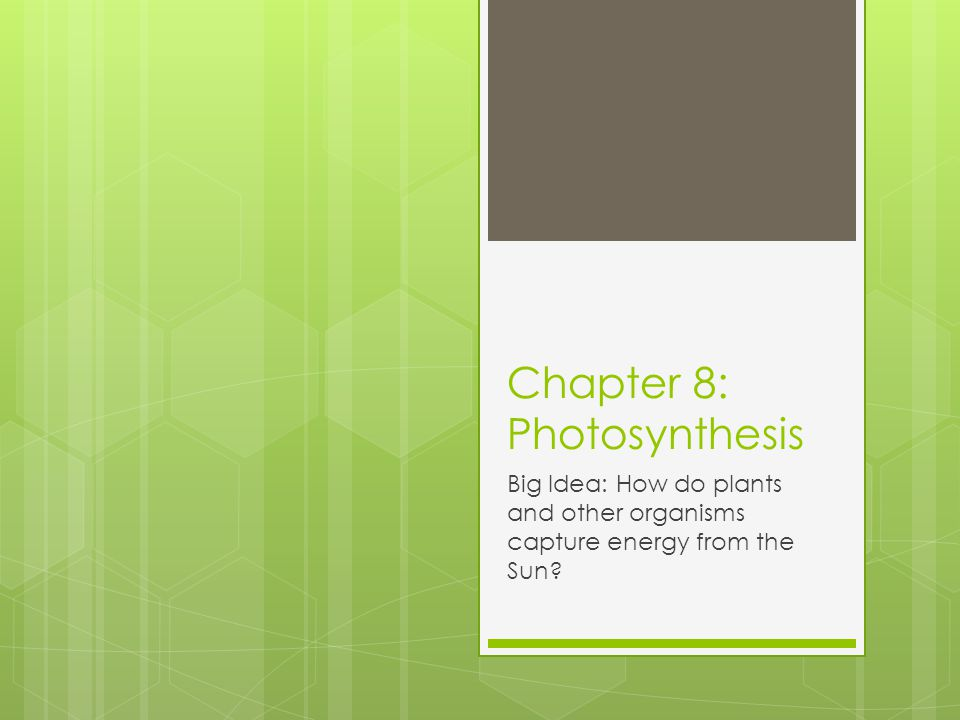 Chapter 8: Photosynthesis Big Idea: How do plants and other organisms capture energy from the Sun?