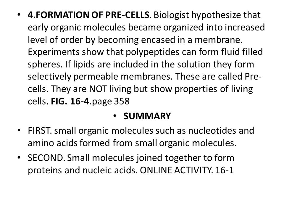 4.FORMATION OF PRE-CELLS.