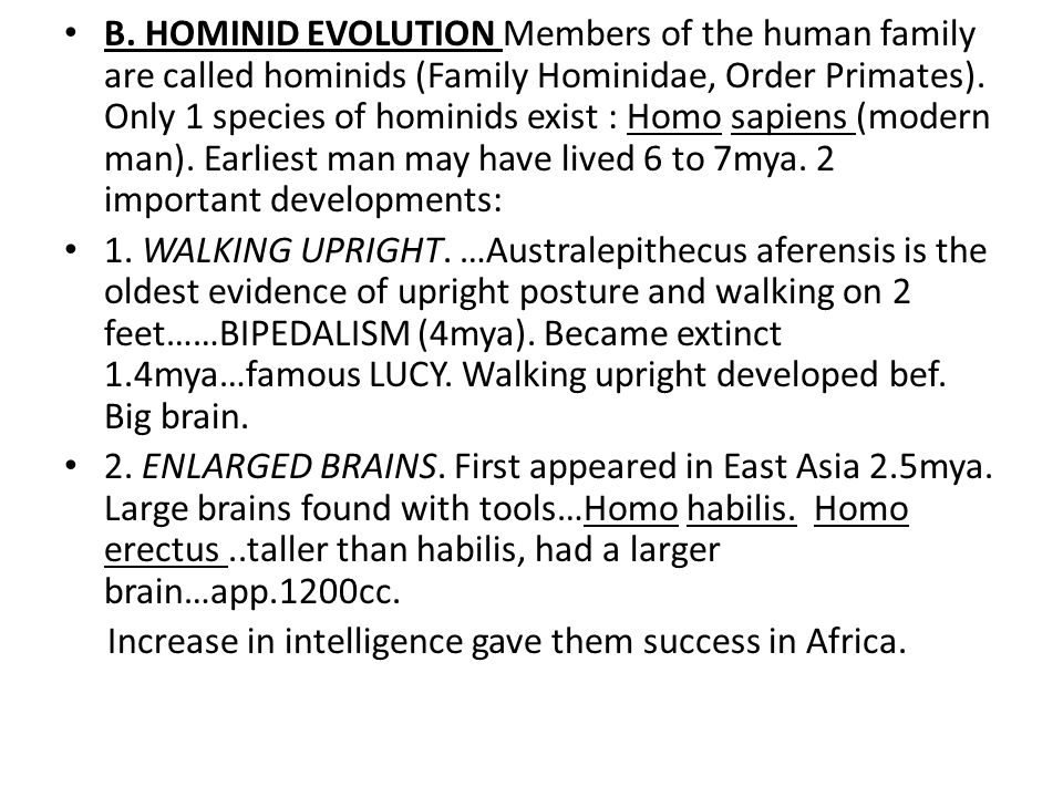 B. HOMINID EVOLUTION Members of the human family are called hominids (Family Hominidae, Order Primates). Only 1 species of hominids exist : Homo sapie