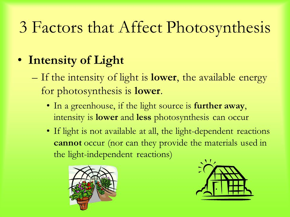 3 Factors that Affect Photosynthesis Intensity of Light –If the intensity of light is lower, the available energy for photosynthesis is lower. In a gr
