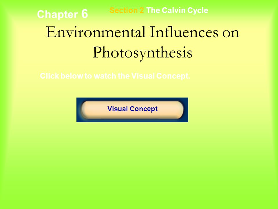 Chapter 6 Environmental Influences on Photosynthesis Section 2 The Calvin Cycle Visual Concept Click below to watch the Visual Concept.
