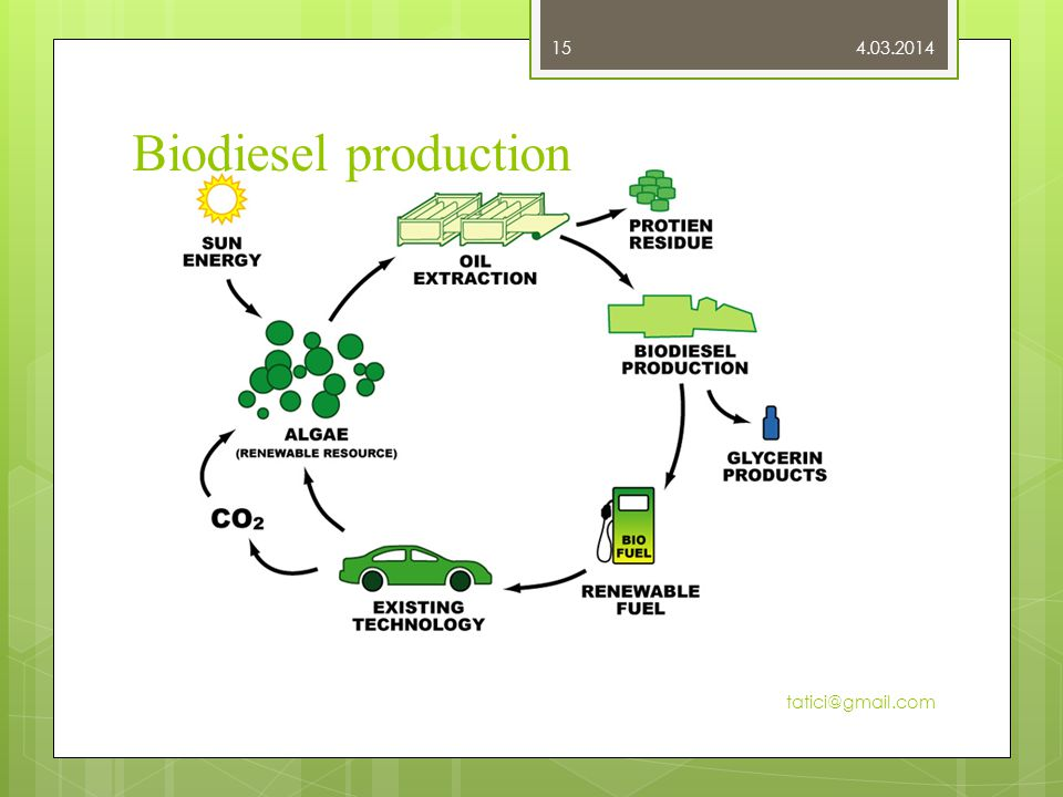 Biodiesel production 4.03.2014 tatici@gmail.com 15