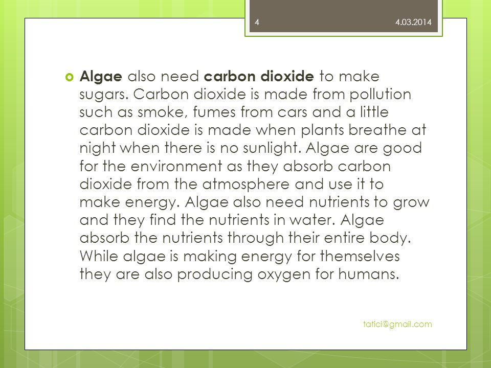  Algae also need carbon dioxide to make sugars.