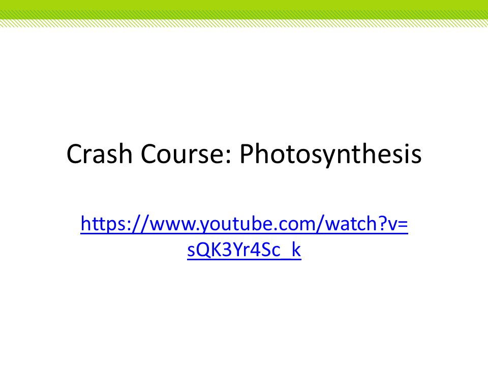 Crash Course: Photosynthesis https://www.youtube.com/watch?v= sQK3Yr4Sc_k