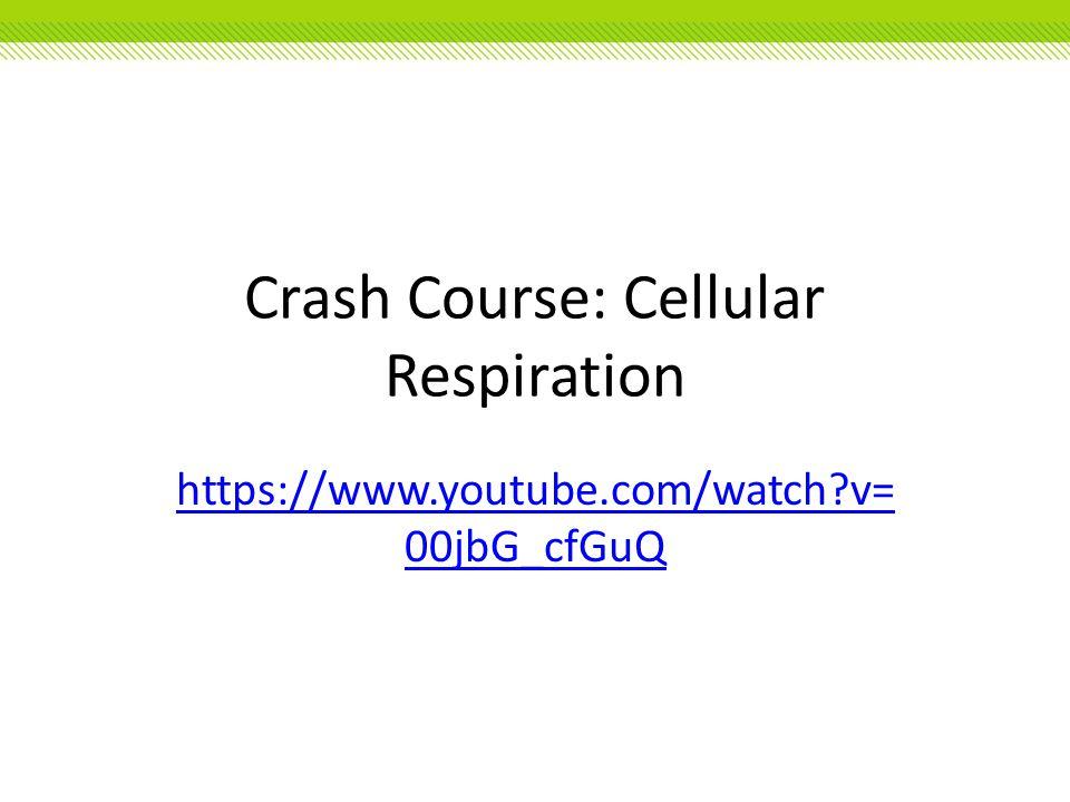 Crash Course: Cellular Respiration https://www.youtube.com/watch?v= 00jbG_cfGuQ