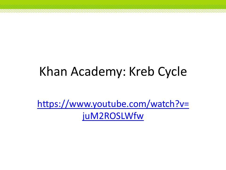 Khan Academy: Kreb Cycle https://www.youtube.com/watch?v= juM2ROSLWfw