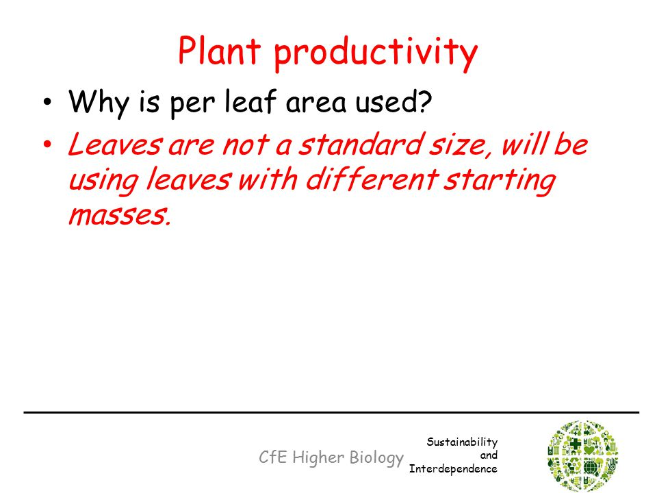 Plant productivity Why is per leaf area used? Leaves are not a standard size, will be using leaves with different starting masses. CfE Higher Biology